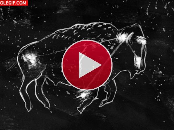 GIF: Constelación del Bisonte
