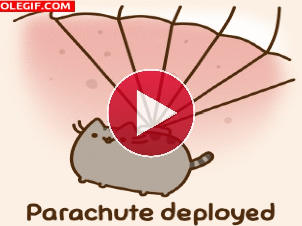 GIF: Gato paracaidista