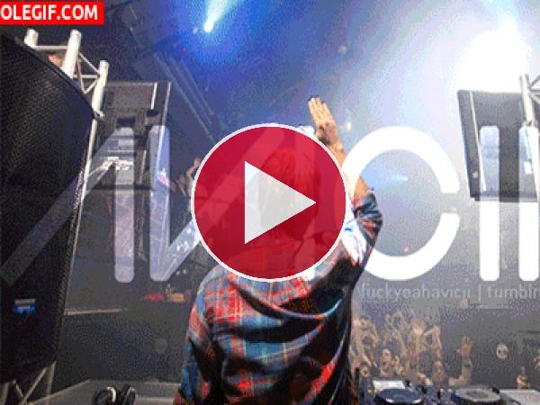 GIF: DJ Avicii