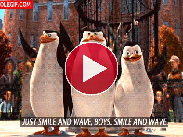 GIF: Solo sonreír y saludar, chicos. Sonreír y saludar.