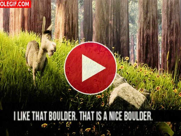 Quiero esa roca. Es una bonita roca.