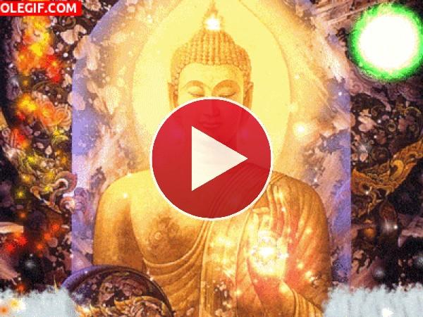 GIF: Buda resplandeciente